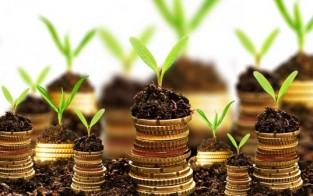 Investment that Earn Passive Income