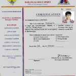 How To Apply for Barangay Clearance in the Philippines
