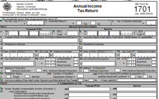 Annual Income Tax Return