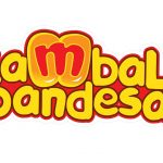 How to Begin a Kambal Pandesal Franchise Business