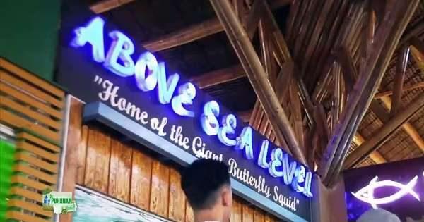 above sea level franchise