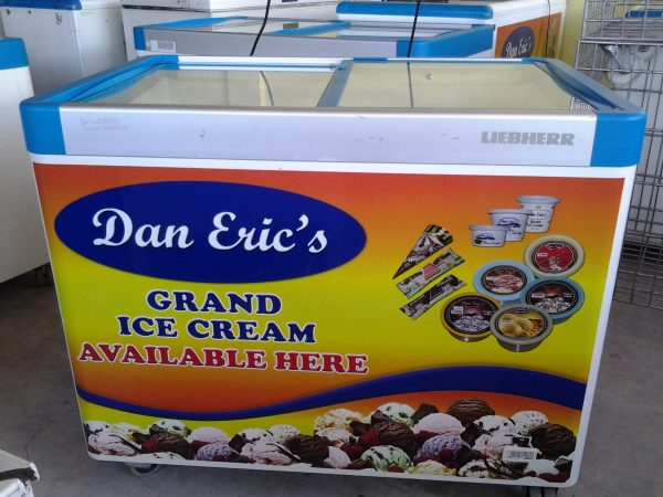 dan eric's ice cream franchise