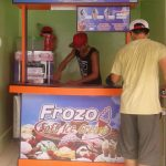 How to Start a Frozo Soft Ice Cream Franchise Business
